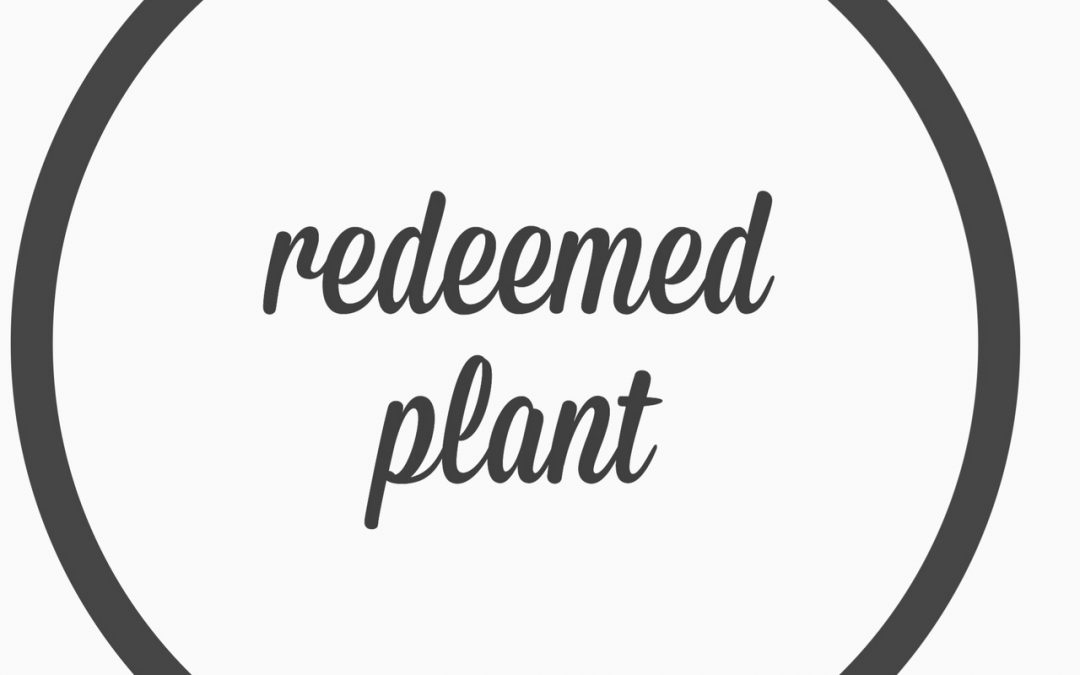 Ep. 14- Redeemed Plant