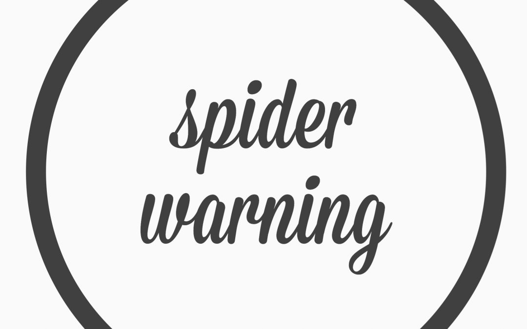 Ep. 22 – Spider warning